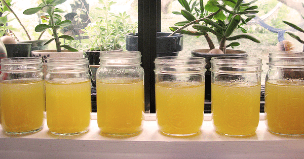 What Is Bone Broth, And Why Is Everyone Drinking It?